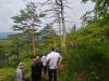 울진국유림관리소, 소나무 고사목 발생지 민관합동조사 실시