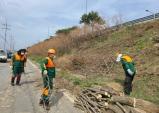 울진군 공공산림가꾸기 사업단 도로변 환경정비